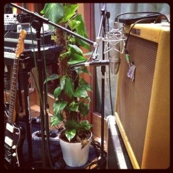 foals-guitar-cabinet-mics-250x250